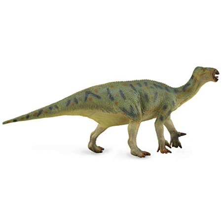 Collecta Prehistoric Life Iguanodon Deluxe 1:40 Scale Dinosaur Figure (Paleontologist Approved Model) (Life Like Dinosaur)