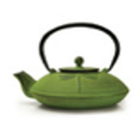 Primula Dragonfly 26 Oz. Cast Iron Teapot With Enameled Interior And Stainless Steel Loose Leaf Tea Infuser (Box) - Green