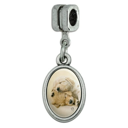 Golden Retriever Puppies Dogs Friends Sleeping Italian European Style Bracelet Oval Charm Bead 3d Golden Retriever Charm