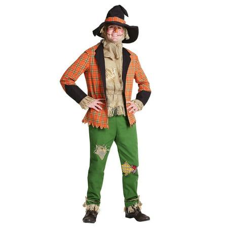 Men's Scarecrow Costume (Man Scarecrow Costume)
