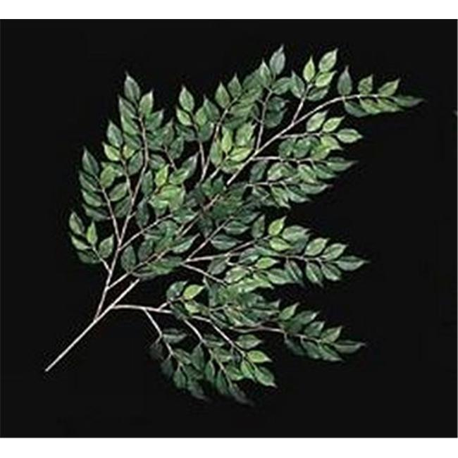 Autograph Foliages PR-552 33 in. Fire Retardant Nitida Ficus Branch