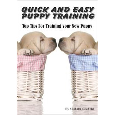 Quick and Easy Puppy Training. Top tips for training your new puppy - - Quick And Easy Halloween Crafts For Kindergarten