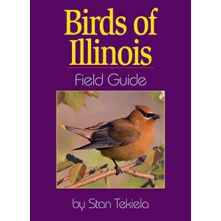 Illinois Lawn Guide - Birds of Illinois Field Guide