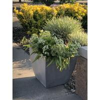 Durx-litecrete Lightweight Concrete Flared Square Light Grey Planter-Medium