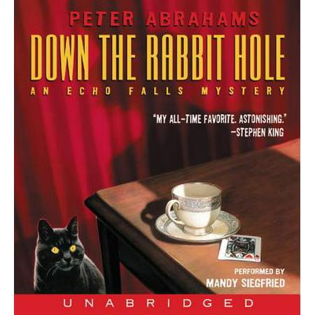 Down the Rabbit Hole - Audiobook (Rabbit Hole Singapore Halloween)