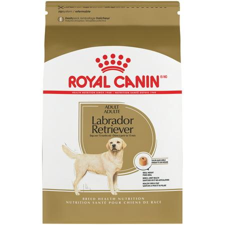 Royal Canin Labrador Retriever Adult Dry Dog Food, 30 lb