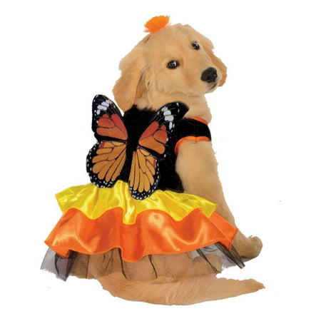 Halloween Monarch Butterfly Pet Costume
