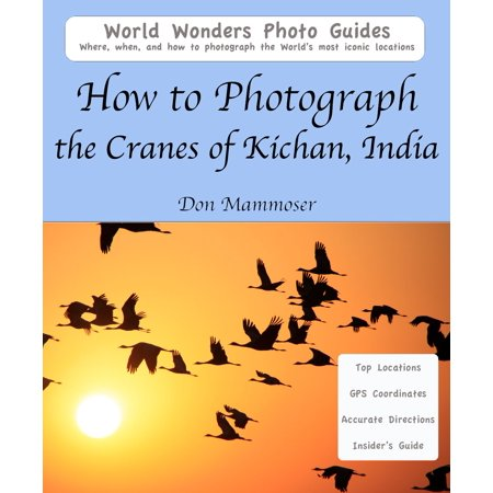 How to Photograph the Cranes of Kichan, India - eBook