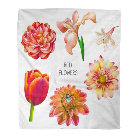 ASHLEIGH Flannel Throw Blanket Beautiful Red Yellow and Pink Flowers Spring Rose Soft for Bed Sofa and Couch 58x80 Inches