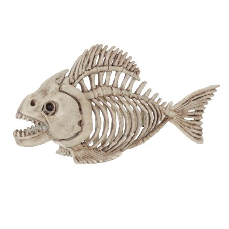 5   Skeleton Fish