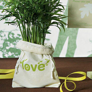 Love Bug Organic Cotton - Weddingstar 9070 ECO Mini Drawstring Bag made of 100% Organic Cotton - Green LOVE Print