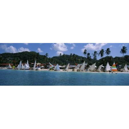 Sailboats on the beach Grenada Sailing Festival Grand Anse Beach Grenada Canvas Art - Panoramic Images (18 x 7)