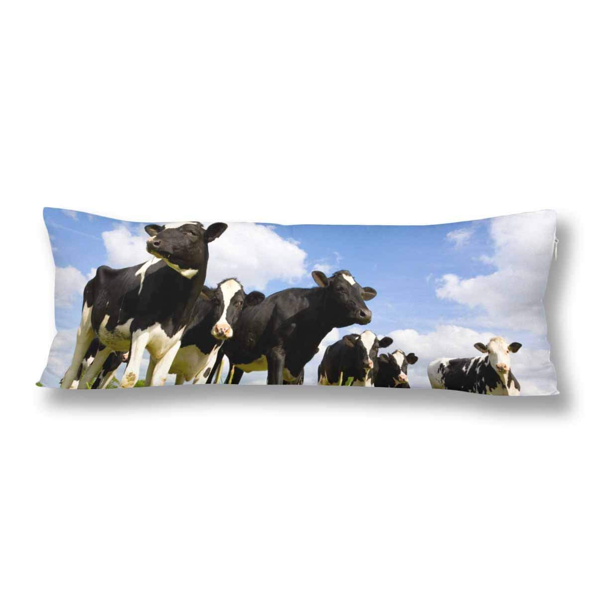 ABPHOTO Holstein Cow in the Meadow Body Pillow Covers Pillowcase 20x60 inch Blue Sky Body Pillow Case Protector