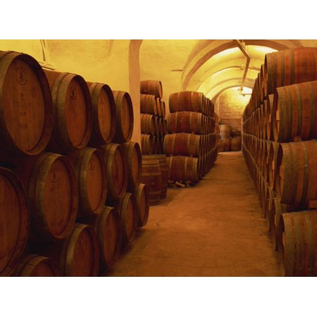 Barrels in Wine Cellar, Badia a Passignano Cave Antinos, Chianti, Tuscany, Italy, Europe Print Wall Art By Morandi Bruno