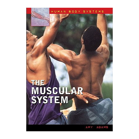 The Muscular System (Tdm Systems)