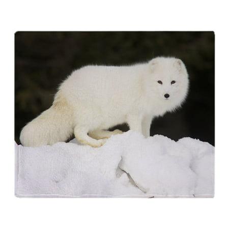 CafePress - Arctic Fox In Deep White Snow - Soft Fleece Throw Blanket, 50