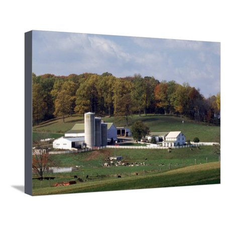 Lancaster Pa Restaurant - Farm, Pa Dutch Country, Lancaster, PA Stretched Canvas Print Wall Art By Roger Holden