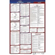 JJ KELLER 400-NV-1 Labor Law Poster,Fed/STA,NV,SP,26inH,1yr