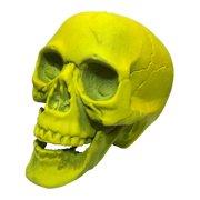 "Yellow Skeleton Skull 6"" Prop Haunted House Halloween Decor Decoration"