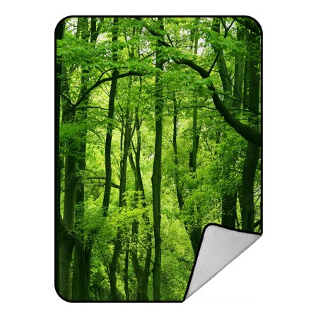 GCKG Beautiful Fresh Green Forest Fleece Blanket Crystal Velvet Front and Lambswool Sherpa Fleece Back Throw Blanket 58x80inches