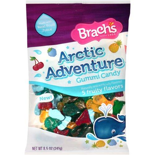 Brach's Arctic Adventure Gummi Candy, 8.5 oz
