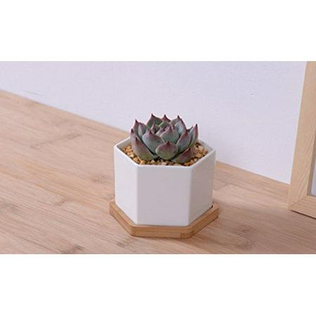Wooden Flower Boxes For Centerpieces (Mr. Garden 3.9-Inch Hexagon Ceramic Flower Pot with Wooden Saucer Container Window Box Desk Decoration)