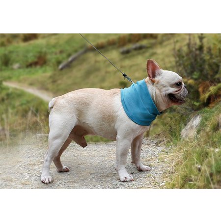 Summer Pet Instant Cooling Scarf Breathable Towel Wrap Dog Collar blue S