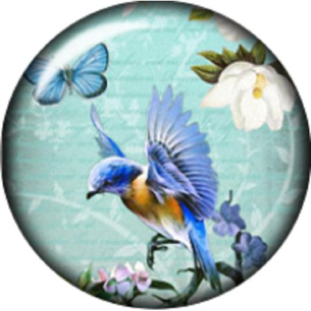 Snap button Hummingird  charm  Jewelry 12mm](Jewelry Snaps)