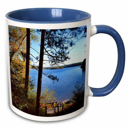 3dRose USA, Minnesota, Itasca State Park, Lake Ozawindib - US24 PHA0032 - Peter Hawkins - Two Tone Blue Mug,