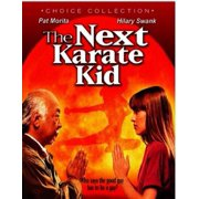 The Next Karate Kid (Blu-ray) (Widescreen) by Allied Vaughn