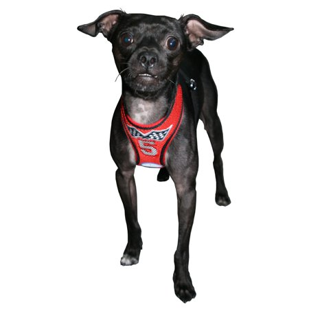 Hip Doggie HD-6RTH-M Medium Racing Team Mesh Harness Vest