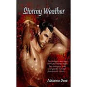 Stormy Weather - eBook