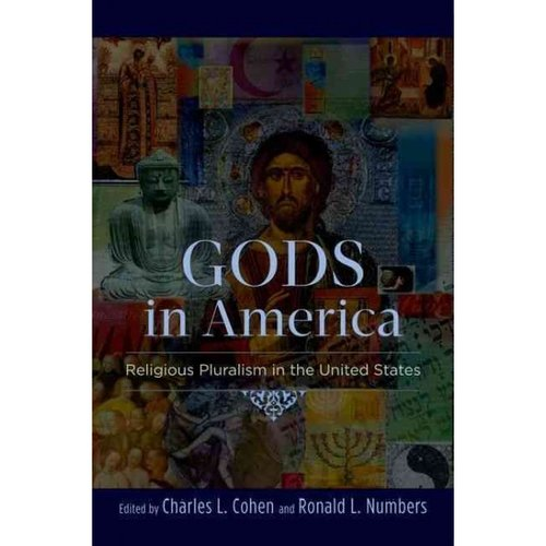 religious pluralism in united states essay Introduction in the modern age of the united states, the demographics of its citizens range from distinctive cultures of the world the cultural diversity in religion consists of judaism, buddhism, and christianity to protestantism.