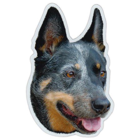 Magnetic Bumper Sticker - Australian Cattle Dog Breed Picture Magnet - Cars, Trucks, SUVs, Etc.