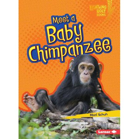 Meet a Baby Chimpanzee - Meet The Baby Party