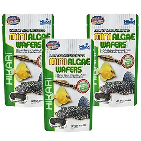 Hikari Mini Algae Wafers Fish Food, 3 Oz