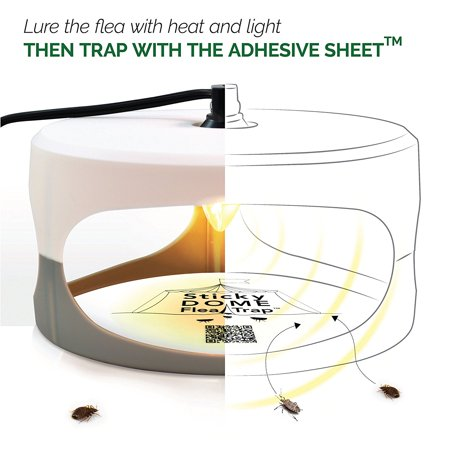Indoor Plug-in Sticky Flea Trap with Light and Heat Attracter (Includes 2-Adhesive Glue-Boards) / Get Rid of All Fleas, Bed Bugs, Flies, Etc. - For Residential and Commercial (Best Stuff To Get Rid Of Fleas In The House)