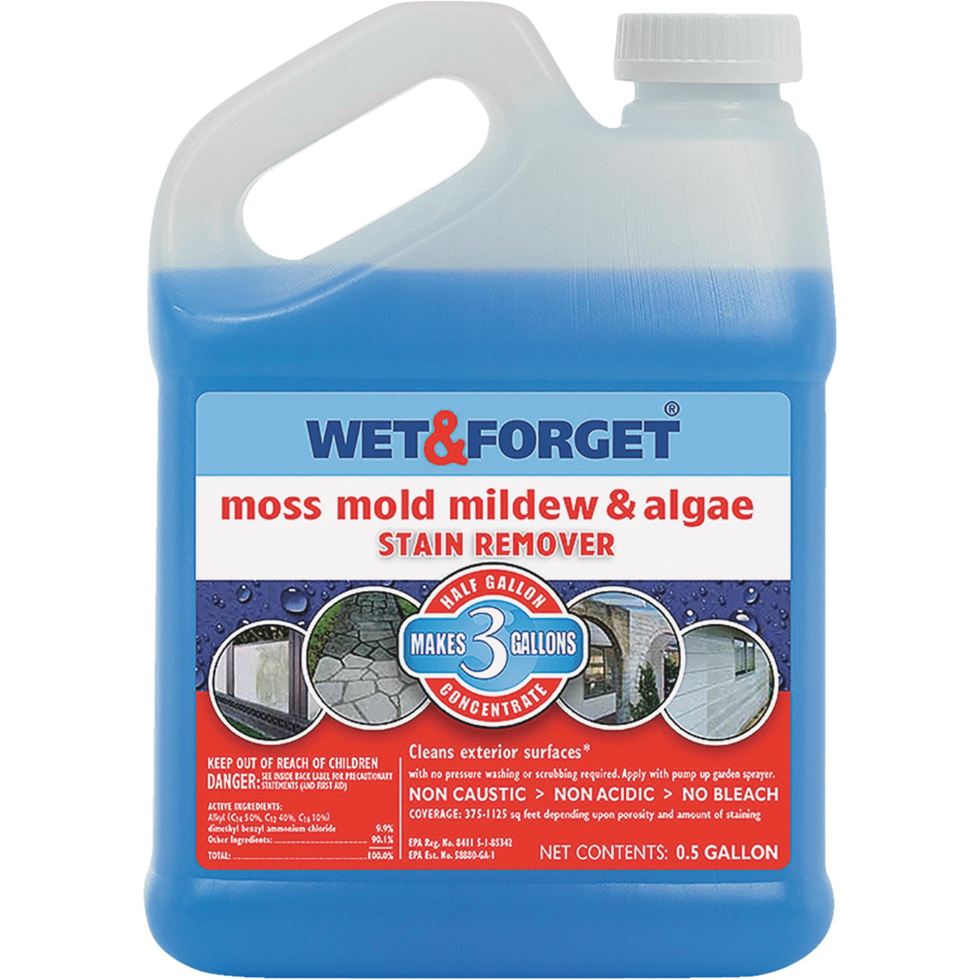 Wet & Forget Outdoor Moss, Mold and Mildew Remover 64oz