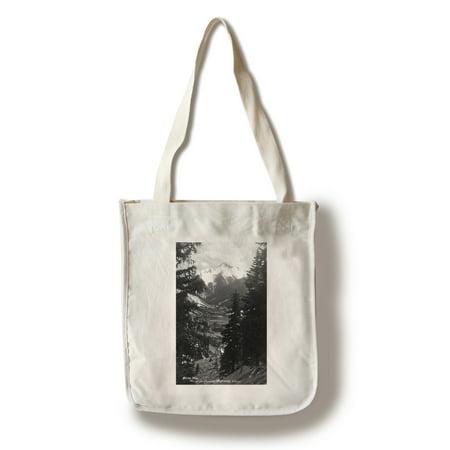 Colorado - Bear Mountain from Million Dollar Hwy - Vintage Photograph (100% Cotton Tote Bag - (1 Million Dollar Home Bag)
