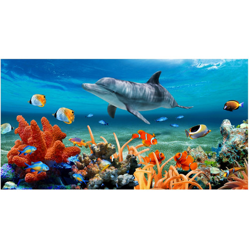 Kaufman Sales Dolphin Coral Reef Beach Towel