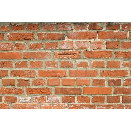 L N Stick Poster Of Bricks Wall Brick Red Texture 24x16 Adhesive