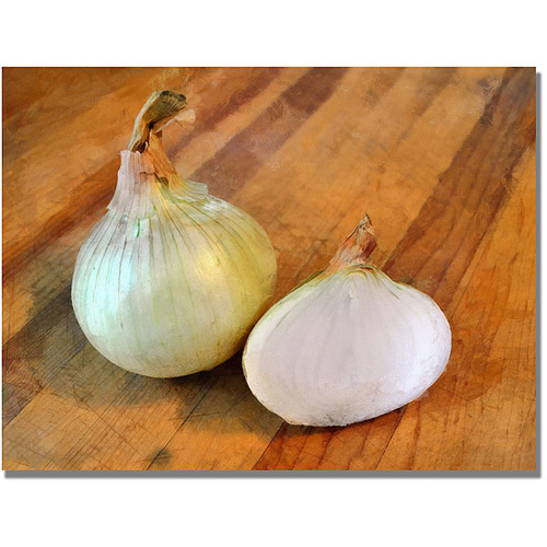 "Trademark Fine Art ""Yellow Onions"" Canvas Wall Art by Michelle Calkins"