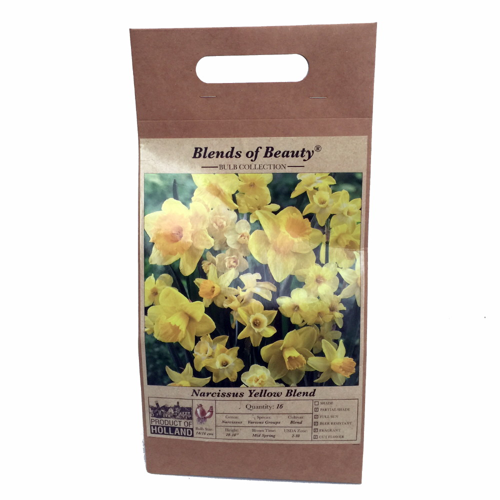 Blends of Beauty Yellow Daffodil Mix - 16 Bulbs - Dutch Bulb Bag