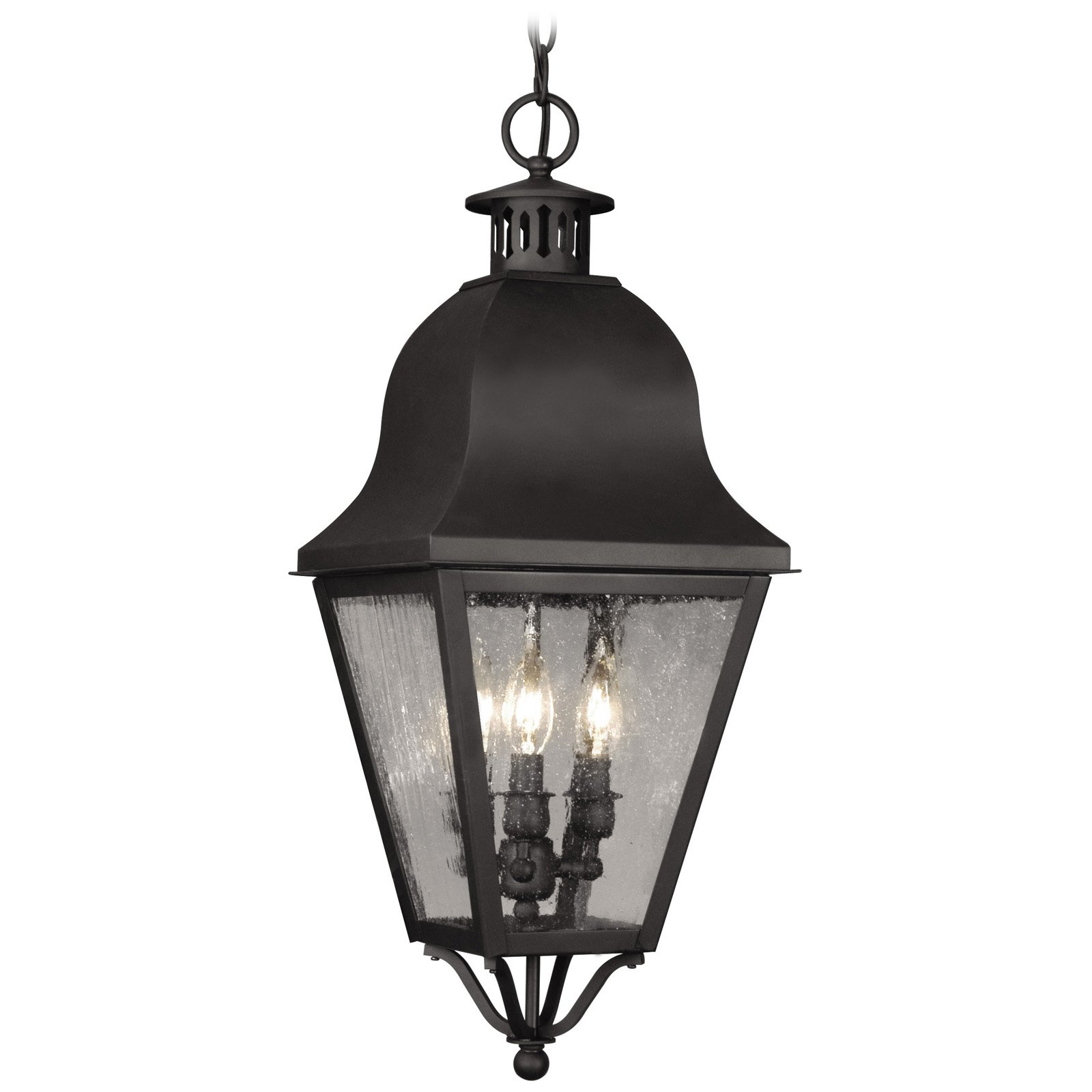 Livex Amwell 2557-04 Outdoor Hanging Lantern 27.5H in. Black by Livex Lighting