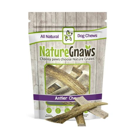Nature Gnaws Deer Antlers 4-5