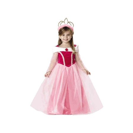 Child Sleeping Beauty Dress Costume