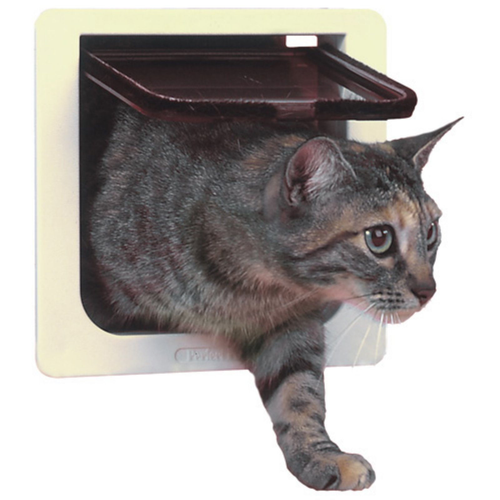 Ideal Storm Door Cat Door