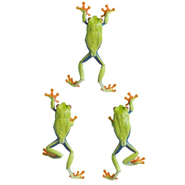 Posterazzi DPI1820123LARGE Three Red Eyed Tree Frogs Climbing Poster Print by Corey Hochachka, 22 x 34 - Large - image 1 of 1