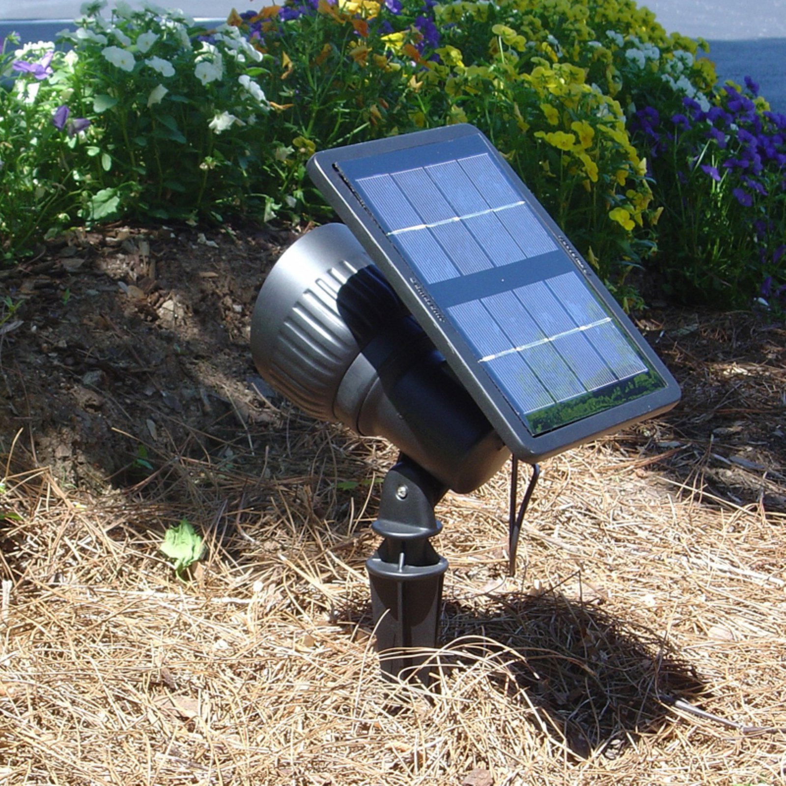 Progressive Solar Spot Light with Warm White LED