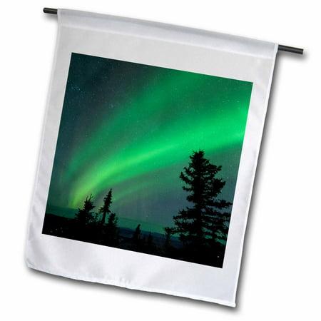 3dRose US, AK, Fairbanks. Dramatic curtain display of Aurora Borealis. - Garden Flag, 12 by 18-inch